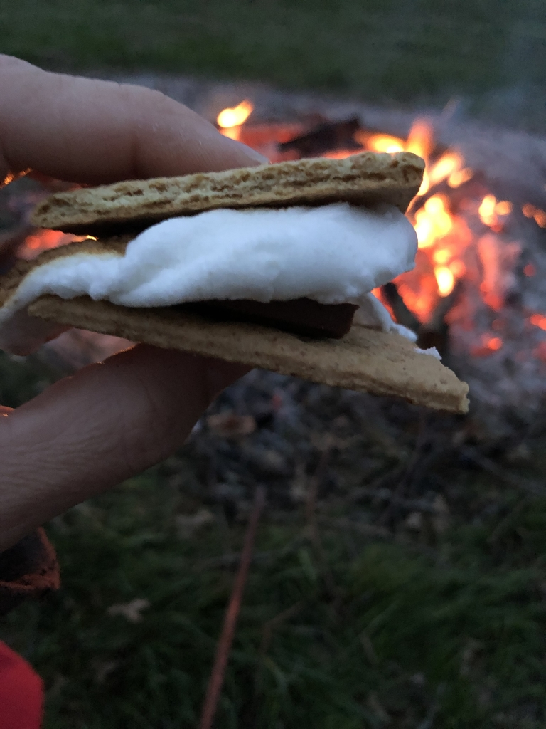 S'mores for supper